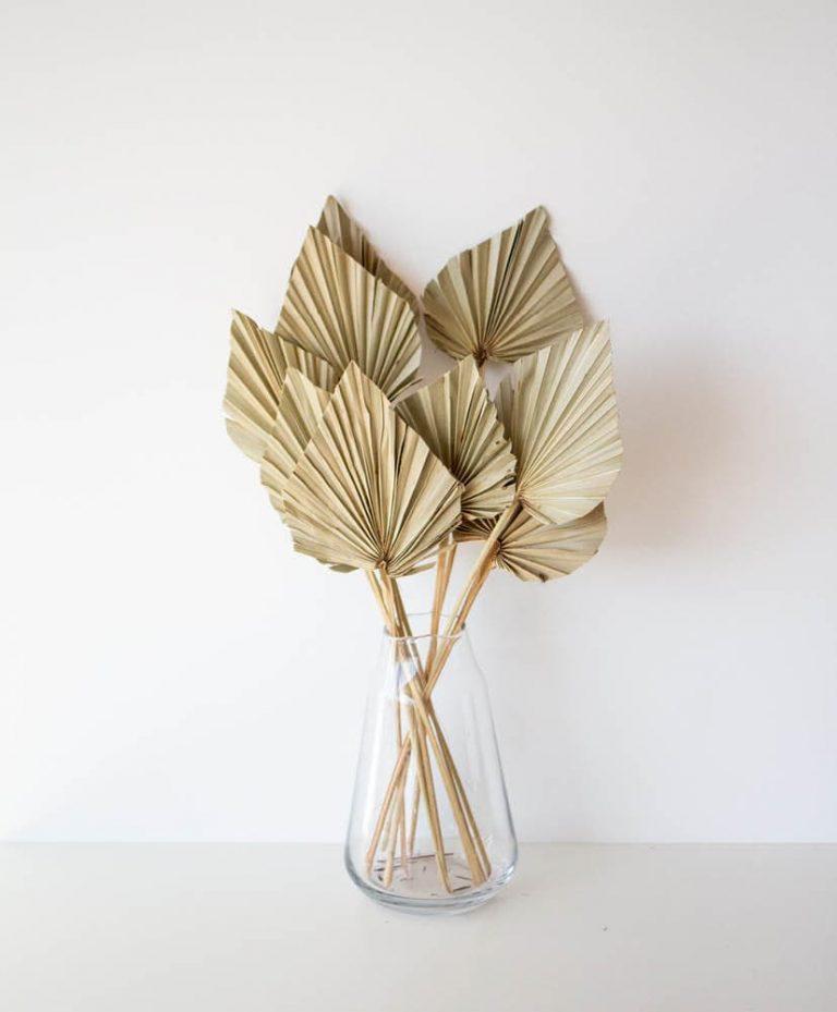 Palmes Naturelles