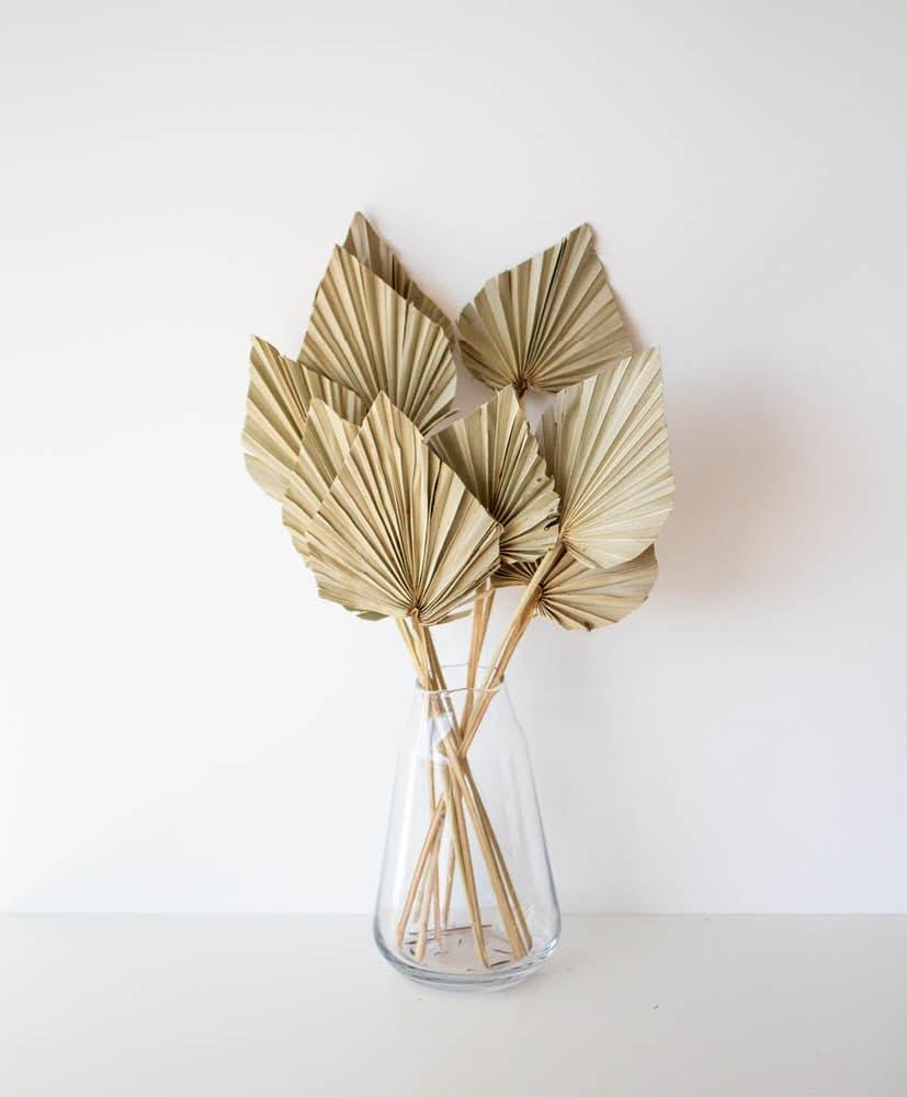 Palmes naturelles exposée dans un vase