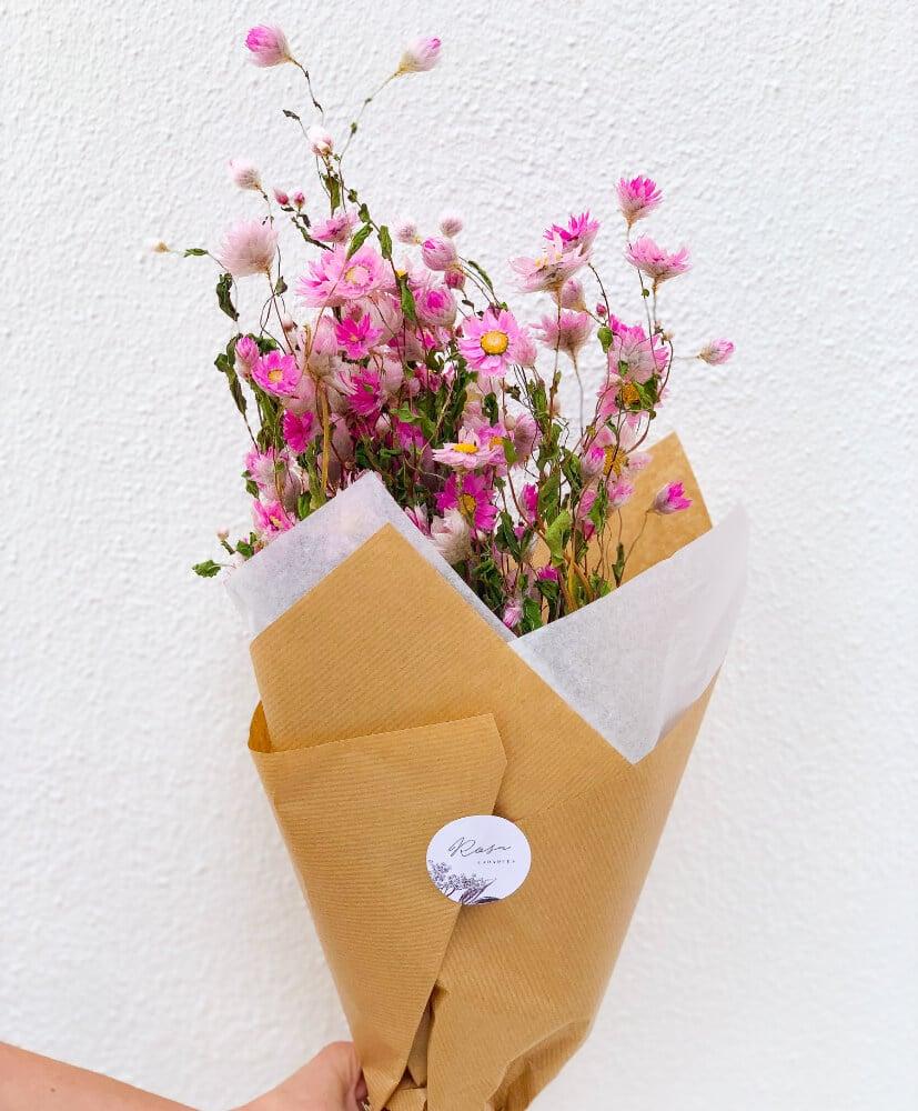 Rodanthe rose