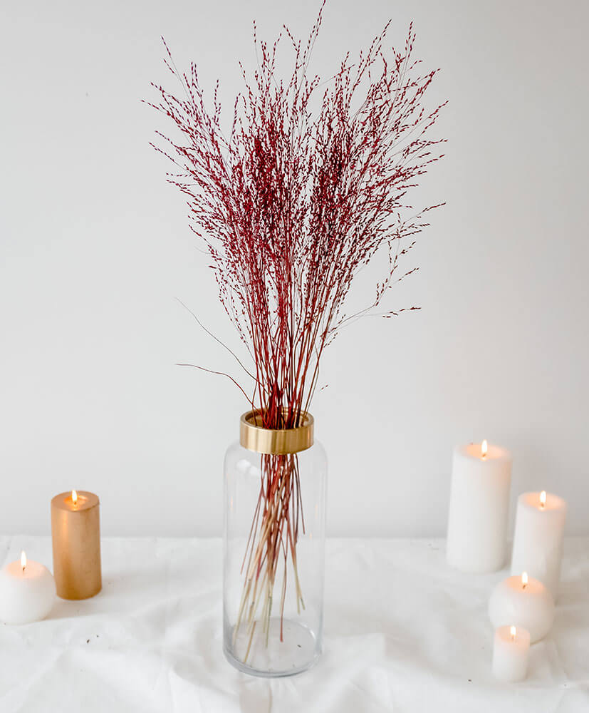 Botte de Panicum Rouge dans un vase sur une table blanche
