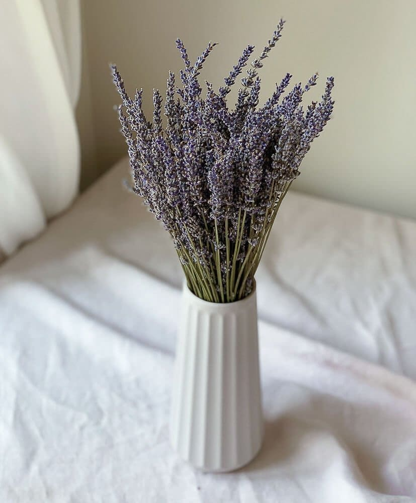 Bouquet of lavender -