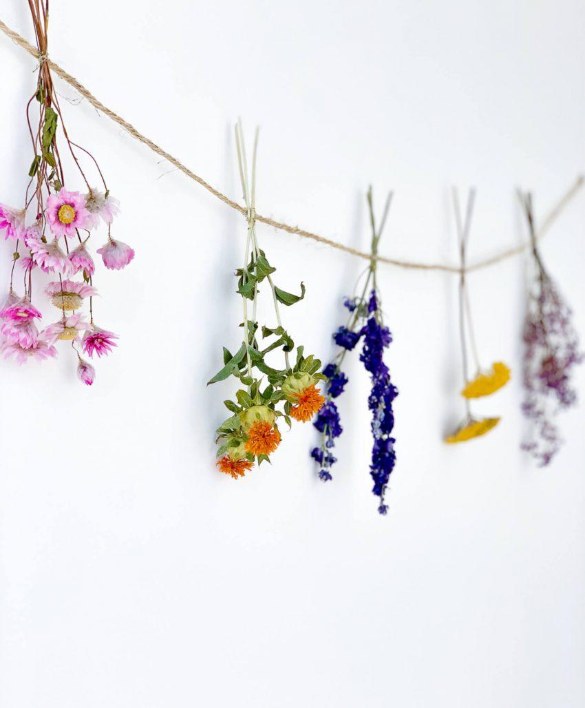 Guirlande de fleurs séchées Joan