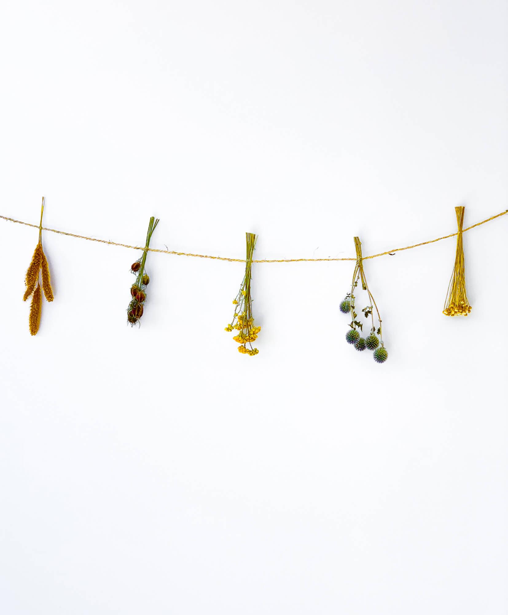 Guirlande de fleurs séchées Salvador