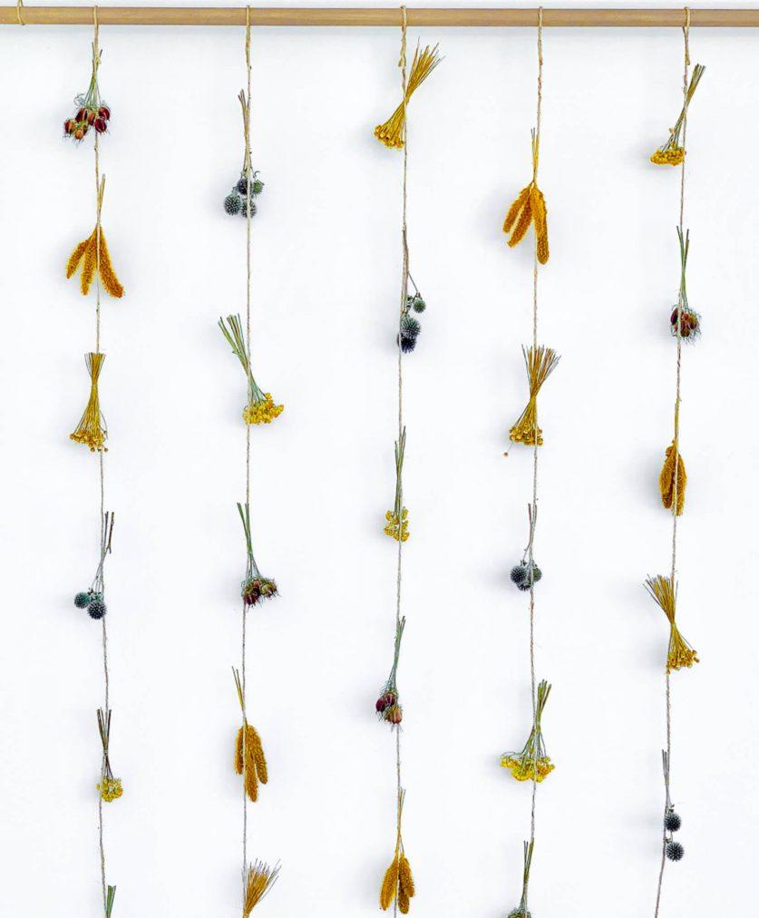 Rideau en fleurs séchées Rosa cadaques