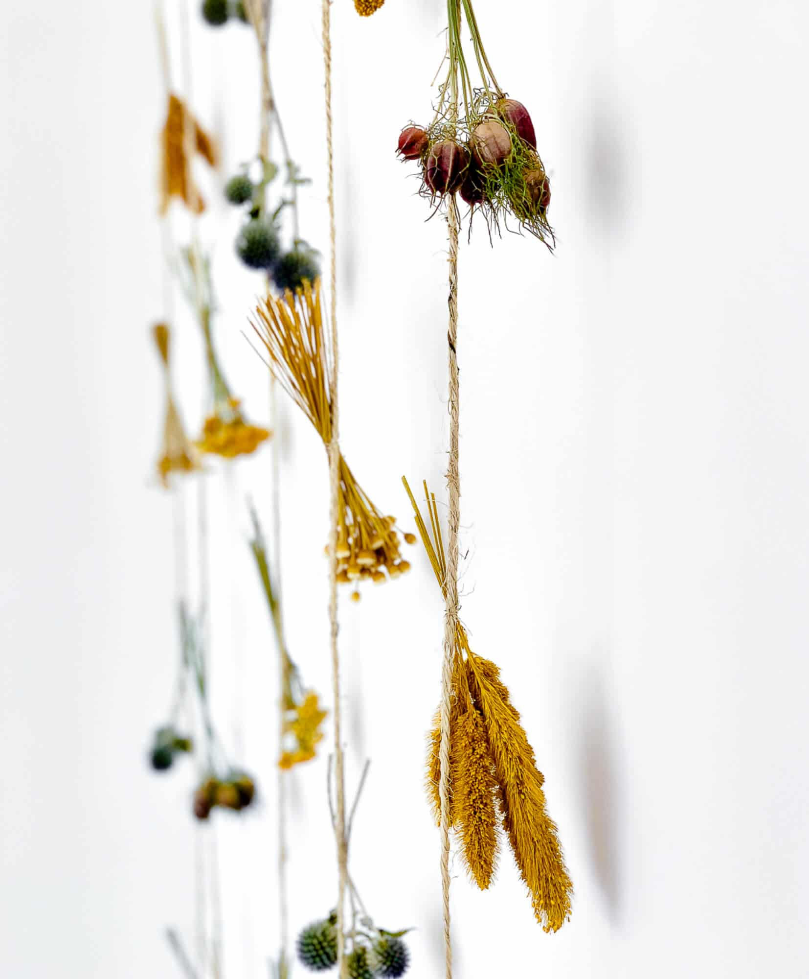 Dried flower curtain Salvador