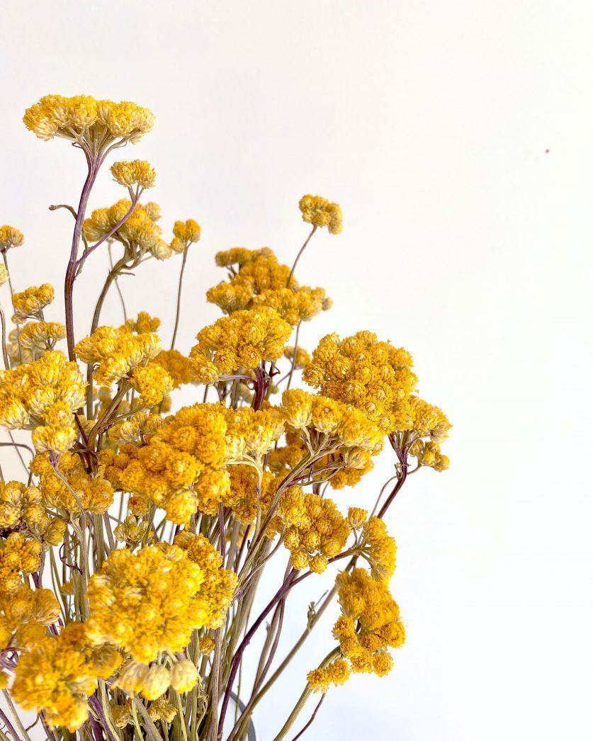 Botte de lona jaune