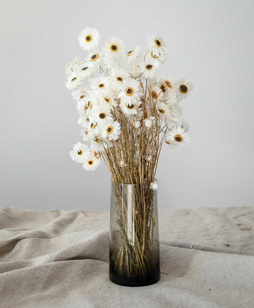 Vase en verre Rosa Cadaqués