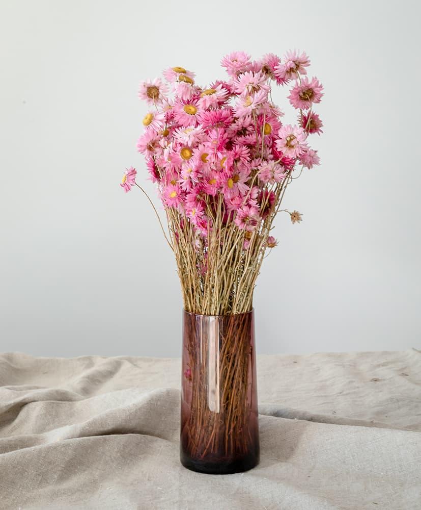 vase rosa par Rosa Cadaqués
